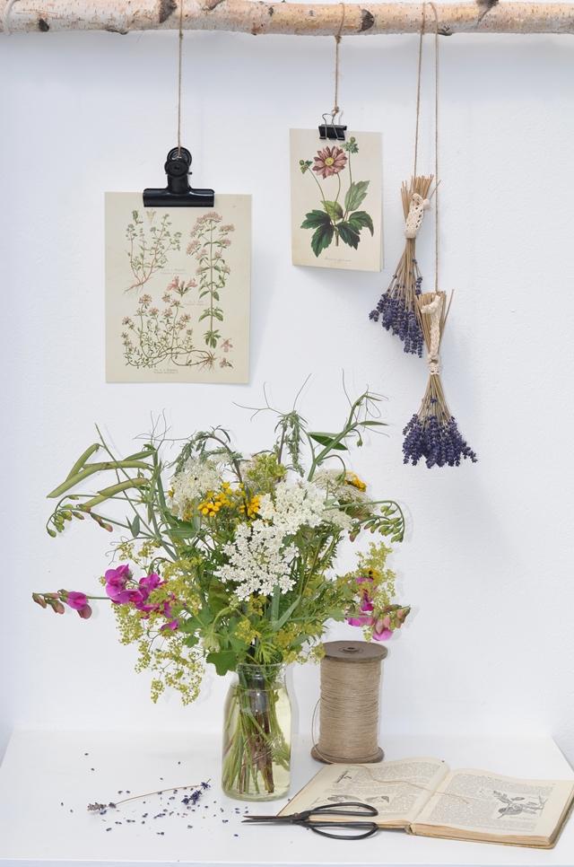 Blumen vom Wegesrand
